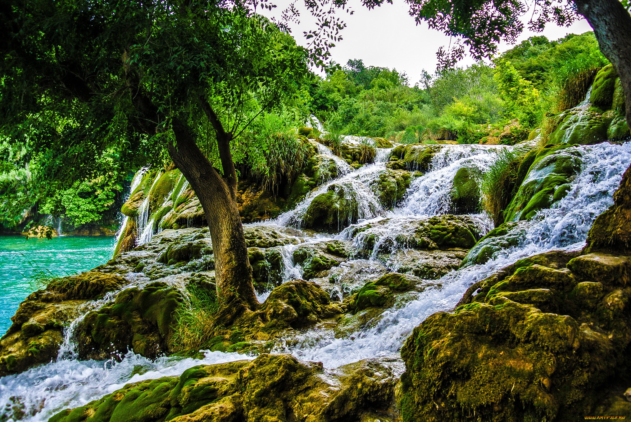 Croatia krka nat park природа водопады обои для